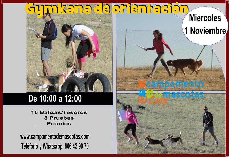 GYMKANA DE ORIENTACIÓN 1 de noviembre