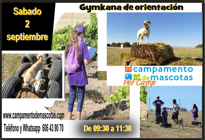 GYMKANA DE ORIENTACIÓN 2 de septiembre
