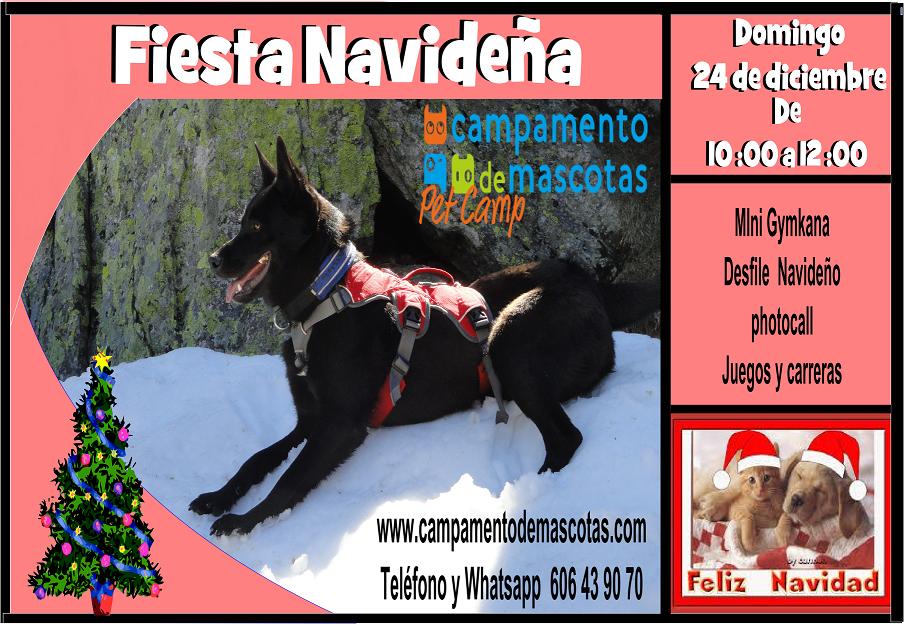 Fiesta Navideña en Campamento de Mascotas