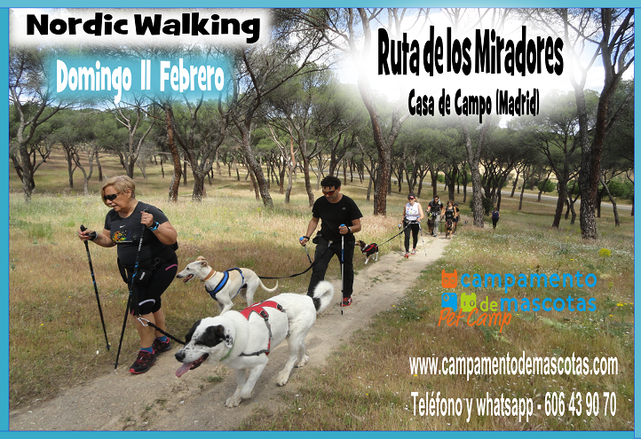 Nordic Walking con perro en Casa de Campo de Madrid el 11 de febrero
