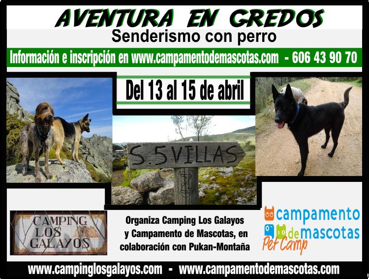 Aventura en Gredos: fin de semana de senderismo con perro (13-15 abril)