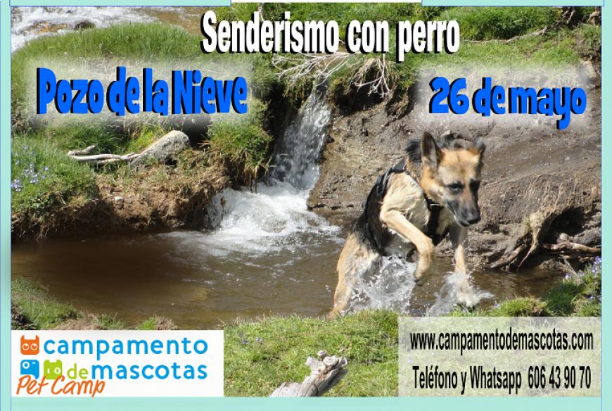 """Senderismo con perro 26 de mayo: """"Pozo de la Nieve"""""""