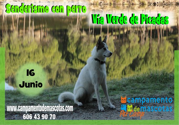 """Senderismo con perro 16 de junio: """"Vía Verde de Picadas"""""""