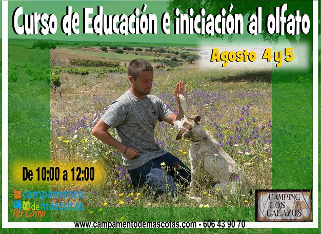 CURSOS EN CAMPING LOS GALAYOS: ADIESTRAMIENTO Y OLFATO (4-5 Agosto)